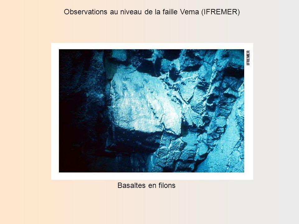 Observations au niveau de la faille Vema (IFREMER) Gabbros