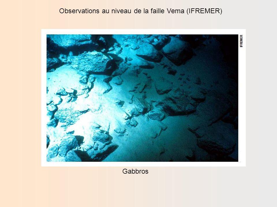 Observations au niveau de la faille Vema (IFREMER) Péridotite