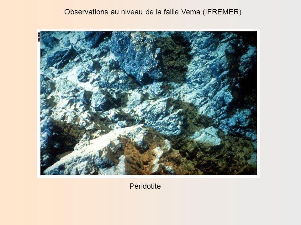 Observations au niveau de la faille Vema (IFREMER) Thèse: Les zones de fracture océanique: Lexemple des ZF Vema et Romanche (Océan Atlantique), IFREMER - Brest 1992