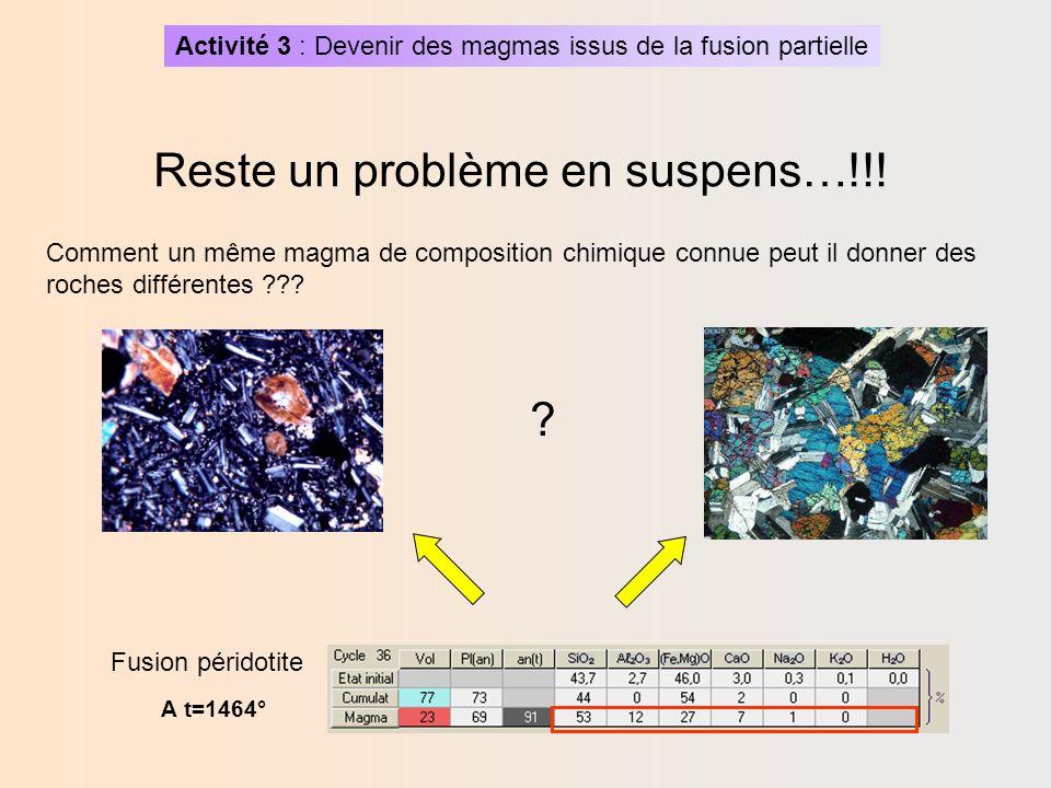 Activité 3 : Devenir des magmas issus de la fusion partielle On peut simuler alors des cristallisations du magma préalablement formé en faisant varier dautres paramètres (vitesse de refroidissement par exemple) Remarque: Complémentarité avec observations et modélisations analogiques (vaniline vu au collège) Expérience de cristallisation avec le logiciel Magma -Créer une nouvelle simulation -Entrer la composition chimique du magma (obtenue précédemment avec 23% de fusion), ainsi que la température (t=1464°) -Faire subir un refroidissment lent (=2).