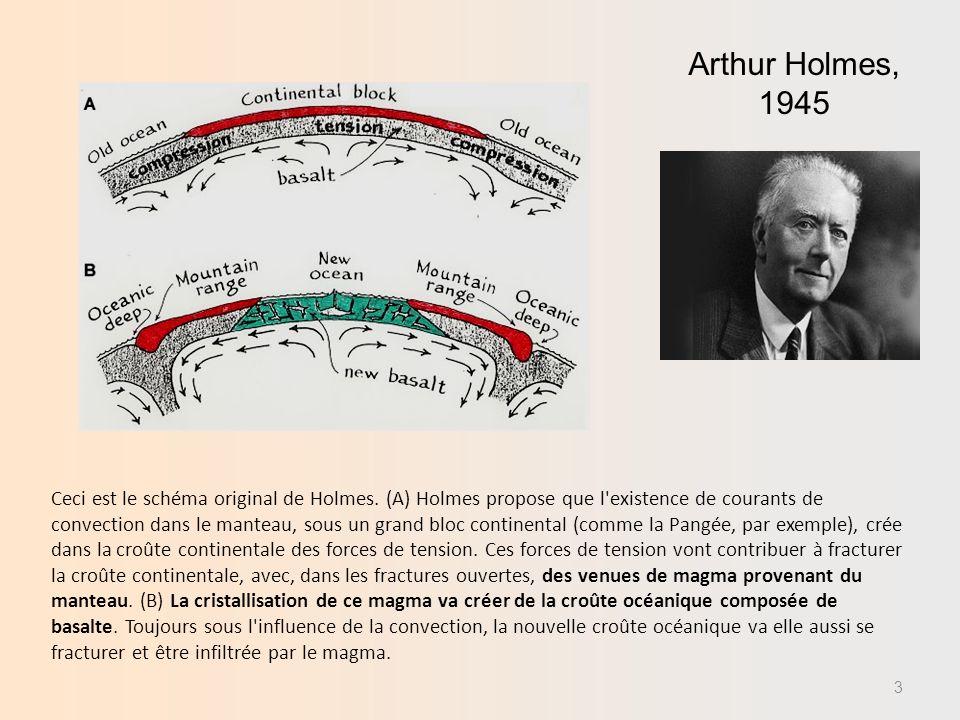 Milieu convectif à lintérieur de la Terre, Arthur HOLMES,1945 Anomalies dans les valeurs du flux océanique thermique un niveau des dorsales (appareil inventé par Edward BULLARD, 1954) Topographie des fonds océaniques par échosondage dorsales et fosses (Marie THARP, Bruce HEEZEN, Maurice Ewing, 1956) H.H.