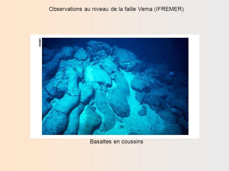 Observations au niveau de la faille Vema (IFREMER) Basaltes en filons