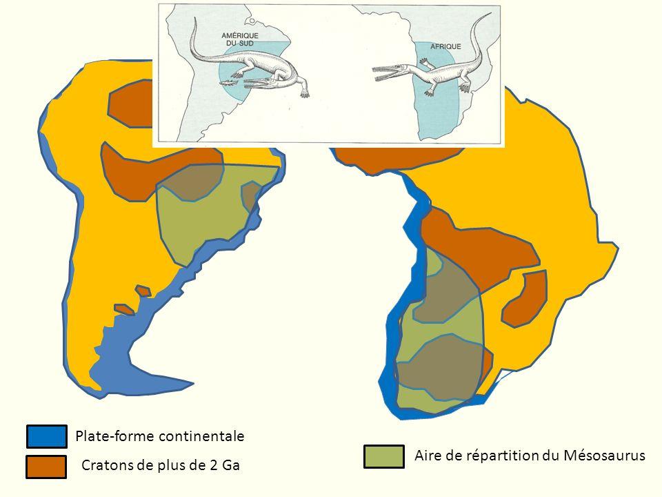 Plate-forme continentale Cratons de plus de 2 Ga Aire de répartition du Mésosaurus