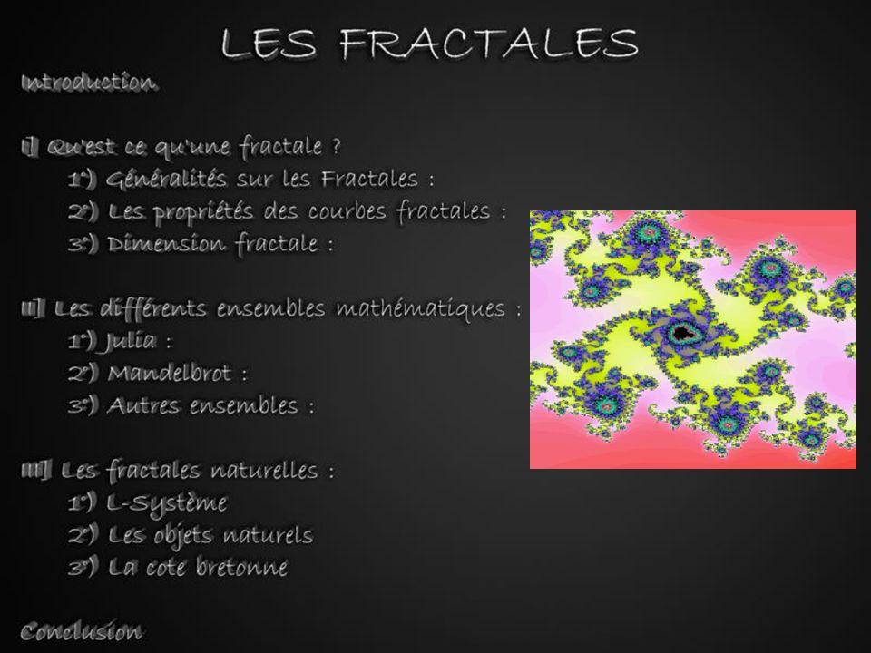 Introduction Nous sommes tous habitués aux objets de la géométrie euclidienne : aux droites, aux cercles, aux rectangles, aux cubes...