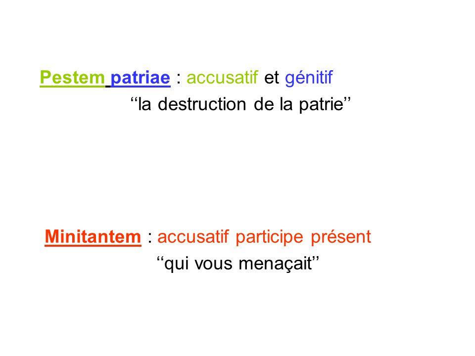 Pestem patriae : accusatif et génitif la destruction de la patrie Minitantem : accusatif participe présent qui vous menaçait