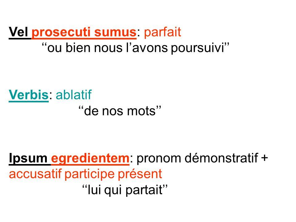 Vel prosecuti sumus: parfait ou bien nous lavons poursuivi Verbis: ablatif de nos mots Ipsum egredientem: pronom démonstratif + accusatif participe pr