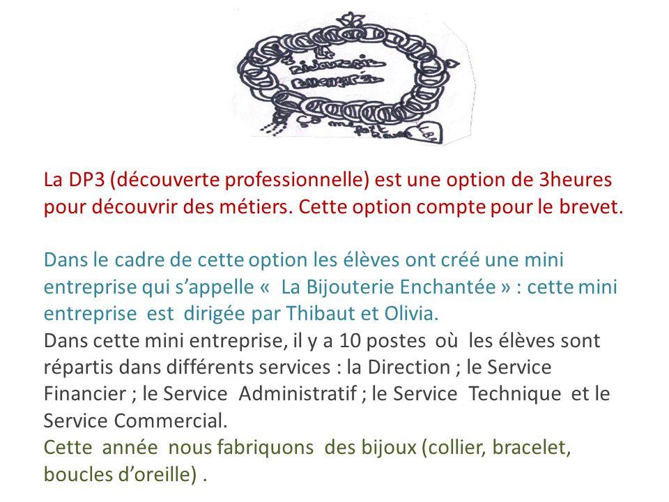 La DP3 (découverte professionnelle) est une option de 3heures pour découvrir des métiers. Cette option compte pour le brevet. Dans le cadre de cette o