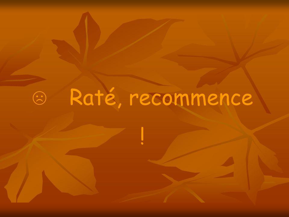 Raté, recommence !