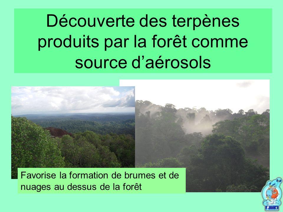 Découverte des terpènes produits par la forêt comme source daérosols Favorise la formation de brumes et de nuages au dessus de la forêt