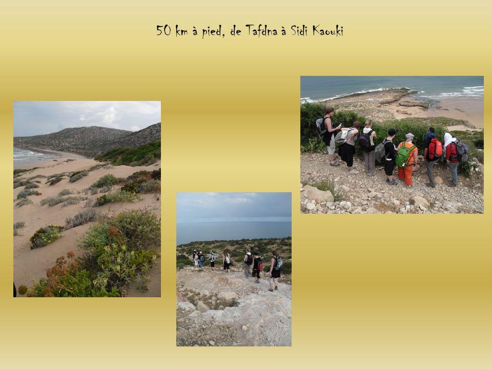 50 km à pied, de Tafdna à Sidi Kaouki