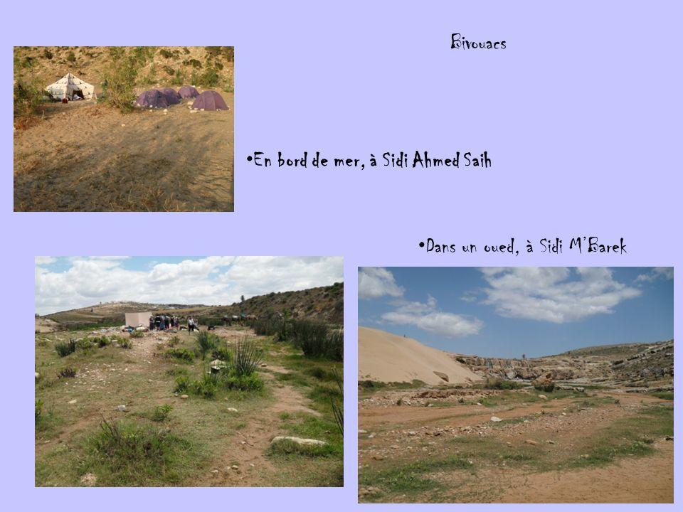 Bivouacs En bord de mer, à Sidi Ahmed Saih Dans un oued, à Sidi MBarek