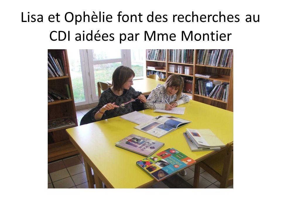 Lisa et Ophèlie font des recherches au CDI aidées par Mme Montier