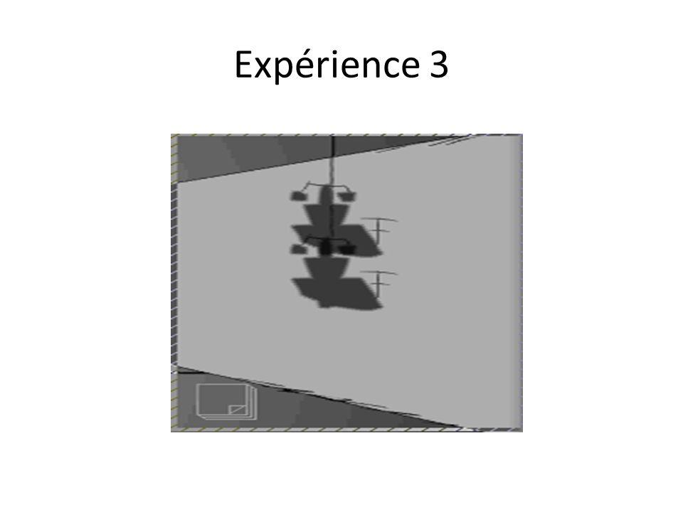 Expérience 3