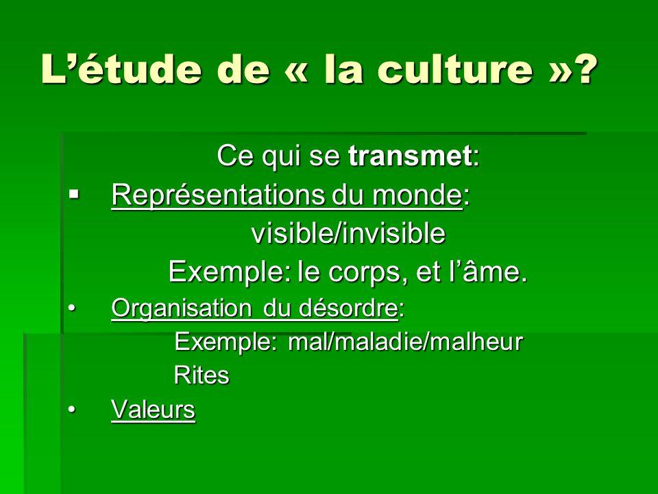 Létude de « la culture »? Ce qui se transmet: Représentations du monde: Représentations du monde:visible/invisible Exemple: le corps, et lâme. Organis