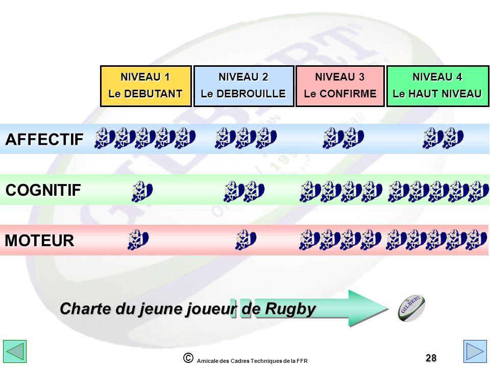 © Amicale des Cadres Techniques de la FFR 28 NIVEAU 1 Le DEBUTANT NIVEAU 2 Le DEBROUILLE NIVEAU 4 Le HAUT NIVEAU NIVEAU 3 Le CONFIRME AFFECTIF COGNITI