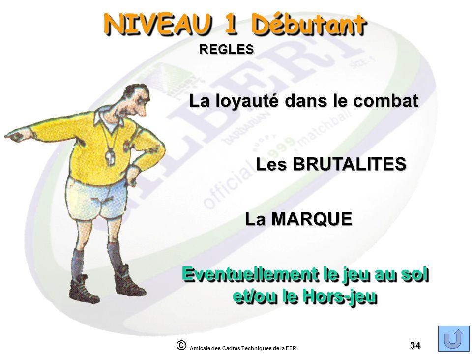 © Amicale des Cadres Techniques de la FFR 34 NIVEAU 1 Débutant REGLES La loyauté dans le combat Les BRUTALITES La MARQUE Eventuellement le jeu au sol