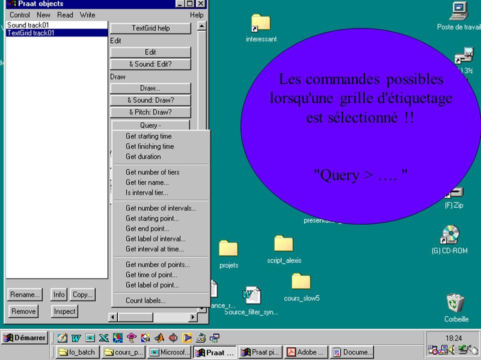 Cédric Gendrot - TAL SLOW 5 - 2003-2004 - ILPGA Les commandes possibles lorsqu'une grille d'étiquetage est sélectionné !!