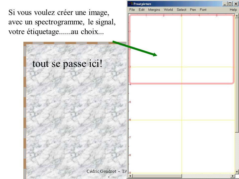 Cédric Gendrot - TAL SLOW 5 - 2003-2004 - ILPGA 17 Si vous voulez créer une image, avec un spectrogramme, le signal, votre étiquetage......au choix...