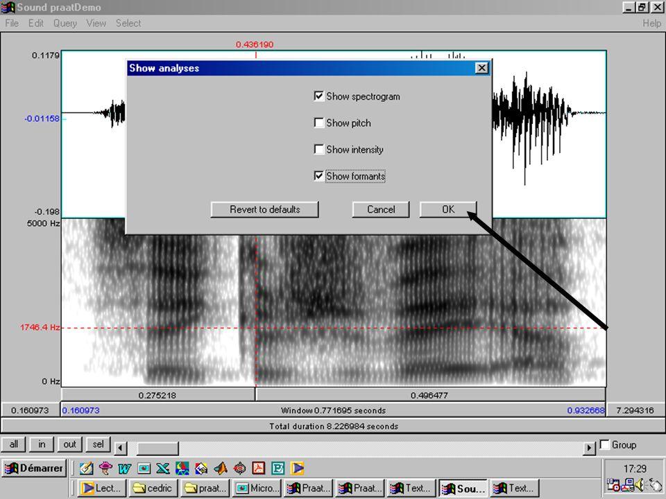 Cédric Gendrot - TAL SLOW 5 - 2003-2004 - ILPGA 63