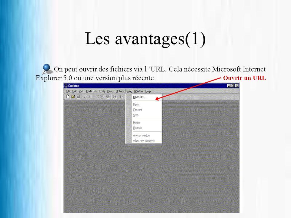 Les avantages(1) On peut ouvrir des fichiers via l URL. Cela nécessite Microsoft Internet Explorer 5.0 ou une version plus récente. Ouvrir un URL