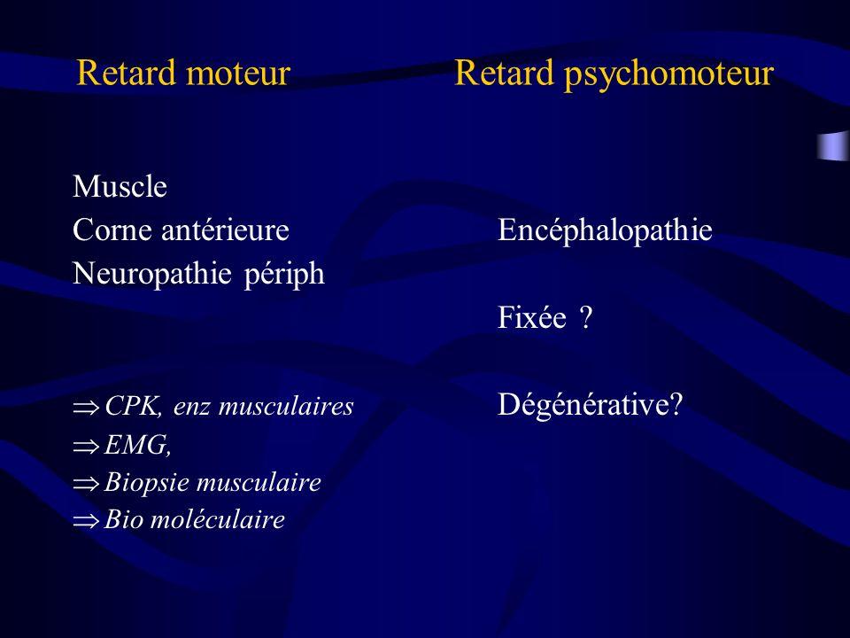 Retard moteur Retard psychomoteur Muscle Corne antérieureEncéphalopathie Neuropathie périph Fixée ? CPK, enz musculaires Dégénérative? EMG, Biopsie mu
