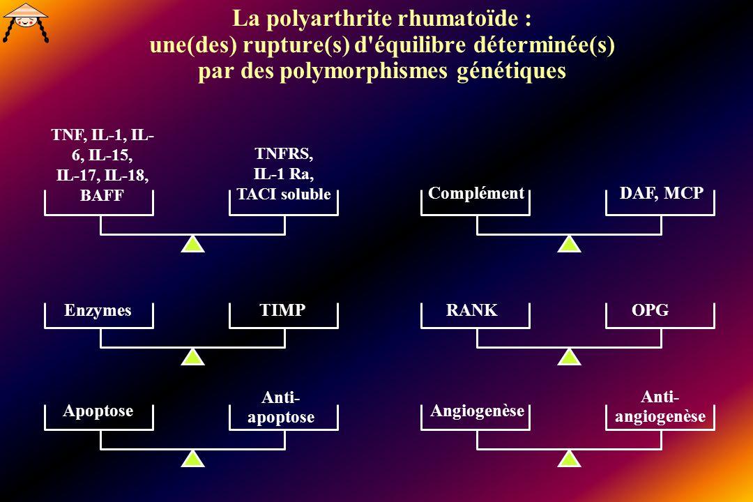 La polyarthrite rhumatoïde : une(des) rupture(s) d équilibre déterminée(s) par des polymorphismes génétiques TNF, IL-1, IL- 6, IL-15, IL-17, IL-18, BAFF TNFRS, IL-1 Ra, TACI soluble EnzymesTIMP Apoptose Anti- apoptose ComplémentDAF, MCP RANKOPG Angiogenèse Anti- angiogenèse