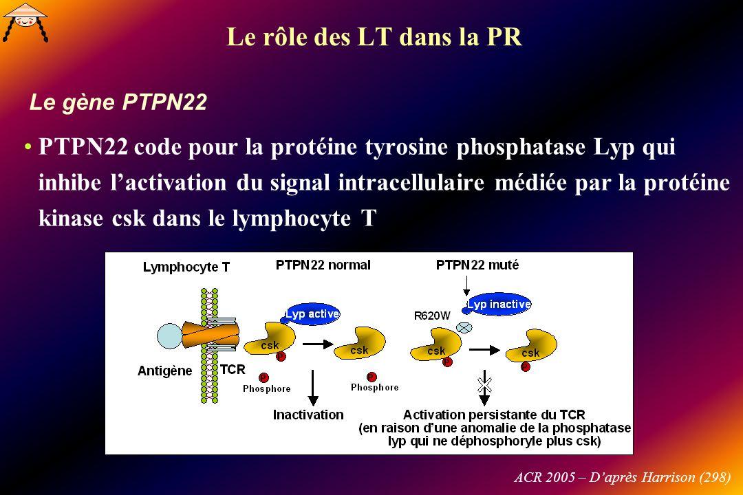 Le gène PTPN22 ACR 2005 – Daprès Harrison (298) Le rôle des LT dans la PR PTPN22 code pour la protéine tyrosine phosphatase Lyp qui inhibe lactivation du signal intracellulaire médiée par la protéine kinase csk dans le lymphocyte T