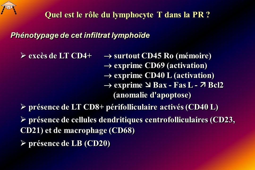 Phénotypage de cet infiltrat lymphoïde excès de LT CD4+ surtout CD45 Ro (mémoire) exprime CD69 (activation) exprime CD40 L (activation) exprime Bax - Fas L - Bcl2 (anomalie d apoptose) présence de LT CD8+ périfolliculaire activés (CD40 L) présence de cellules dendritiques centrofolliculaires (CD23, CD21) et de macrophage (CD68) présence de LB (CD20) excès de LT CD4+ surtout CD45 Ro (mémoire) exprime CD69 (activation) exprime CD40 L (activation) exprime Bax - Fas L - Bcl2 (anomalie d apoptose) présence de LT CD8+ périfolliculaire activés (CD40 L) présence de cellules dendritiques centrofolliculaires (CD23, CD21) et de macrophage (CD68) présence de LB (CD20) Quel est le rôle du lymphocyte T dans la PR ?