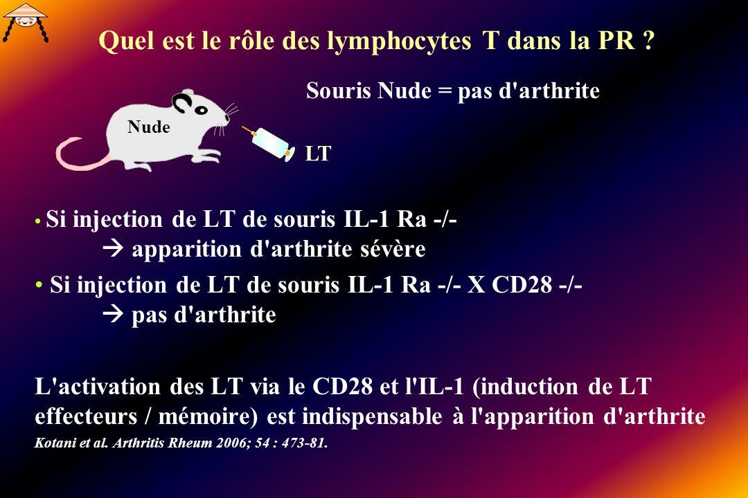 Quel est le rôle des lymphocytes T dans la PR ? Si injection de LT de souris IL-1 Ra -/- apparition d'arthrite sévère Si injection de LT de souris IL-