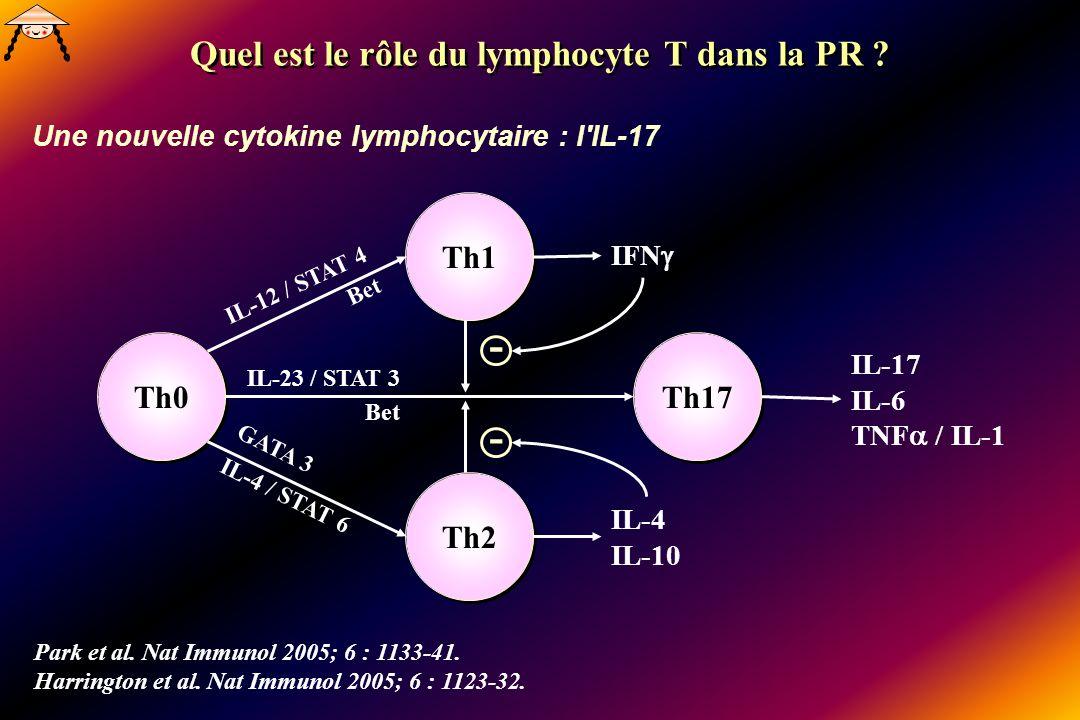 Th0 Th1 Th2 Th17 IL-17 IL-6 TNF / IL-1 Park et al. Nat Immunol 2005; 6 : 1133-41. Harrington et al. Nat Immunol 2005; 6 : 1123-32. IL-12 / STAT 4 Bet