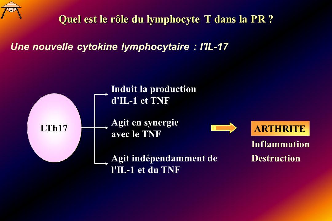 Une nouvelle cytokine lymphocytaire : l'IL-17 Quel est le rôle du lymphocyte T dans la PR ? LTh17 Induit la production d'IL-1 et TNF Agit en synergie