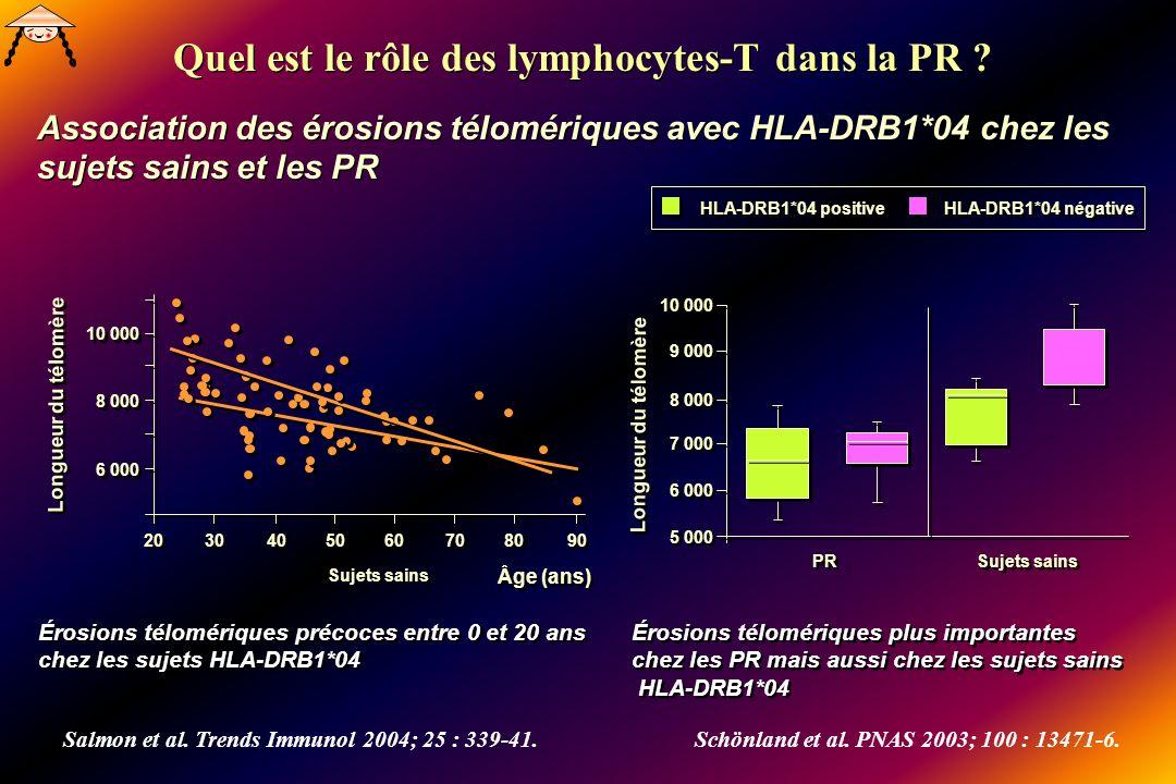 Quel est le rôle des lymphocytes-T dans la PR ? Association des érosions télomériques avec HLA-DRB1*04 chez les sujets sains et les PR Quel est le rôl
