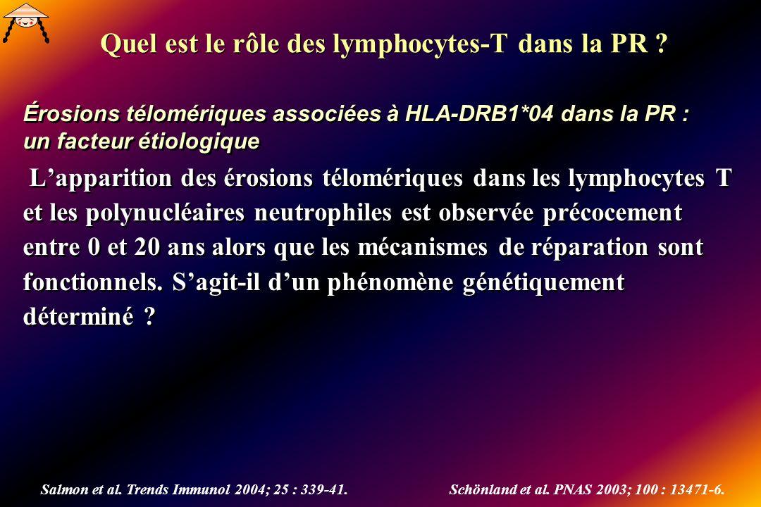 Quel est le rôle des lymphocytes-T dans la PR ? Érosions télomériques associées à HLA-DRB1*04 dans la PR : un facteur étiologique Lapparition des éros