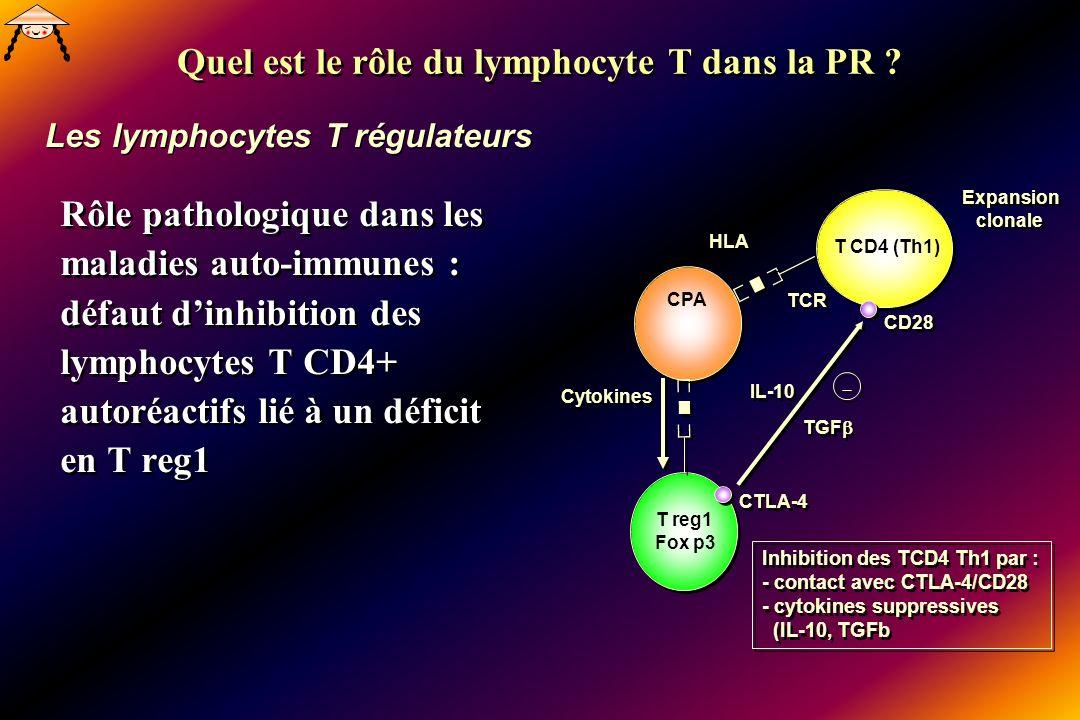 Rôle pathologique dans les maladies auto-immunes : défaut dinhibition des lymphocytes T CD4+ autoréactifs lié à un déficit en T reg1 Expansion clonale Expansion clonale CPA HLA TCR T reg1 Fox p3 T CD4 (Th1) IL-10 TGF Cytokines CTLA-4 CD28 Inhibition des TCD4 Th1 par : - contact avec CTLA-4/CD28 - cytokines suppressives (IL-10, TGFb Inhibition des TCD4 Th1 par : - contact avec CTLA-4/CD28 - cytokines suppressives (IL-10, TGFb Les lymphocytes T régulateurs Quel est le rôle du lymphocyte T dans la PR ?