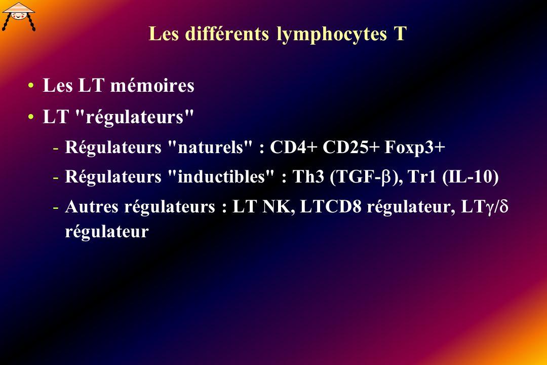 Les différents lymphocytes T Les LT mémoires LT régulateurs -Régulateurs naturels : CD4+ CD25+ Foxp3+ -Régulateurs inductibles : Th3 (TGF- ), Tr1 (IL-10) -Autres régulateurs : LT NK, LTCD8 régulateur, LT / régulateur