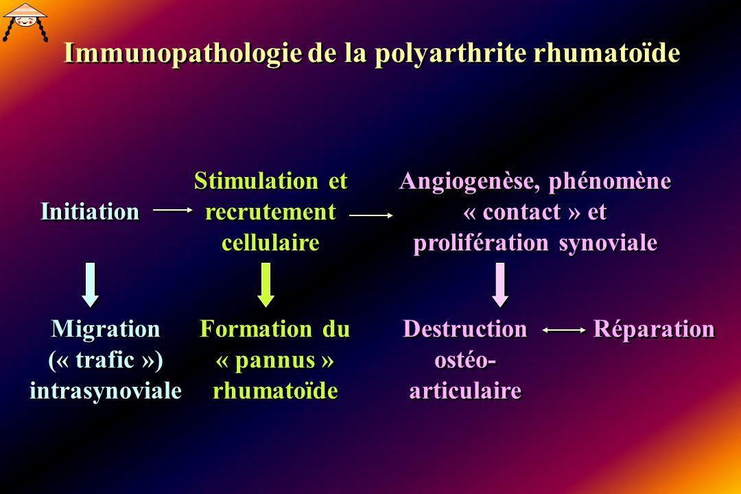 Immunopathologie de la polyarthrite rhumatoïde Initiation Stimulation et recrutement cellulaire Angiogenèse, phénomène « contact » et prolifération synoviale Migration (« trafic ») intrasynoviale Formation du « pannus » rhumatoïde Destruction ostéo- articulaire Réparation