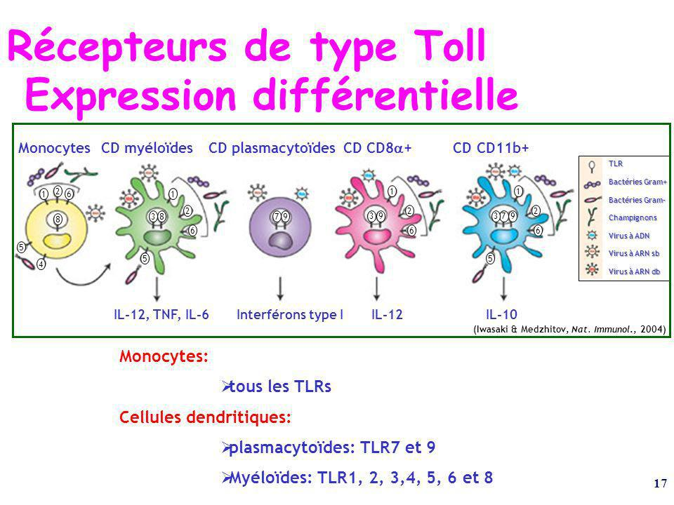 17 (Iwasaki & Medzhitov, Nat. Immunol., 2004) Monocytes CD myéloïdes CD plasmacytoïdes CD CD8 + CD CD11b+ IL-12, TNF, IL-6 Interférons type I IL-12 IL