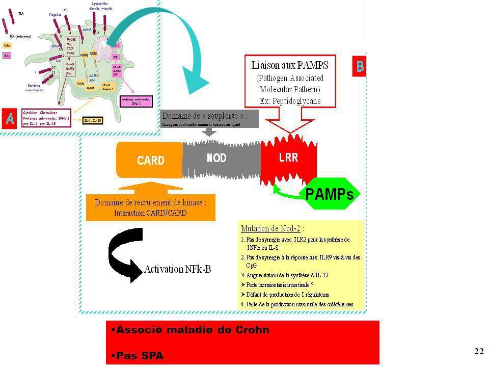 22 A Associé maladie de Crohn Pas SPA