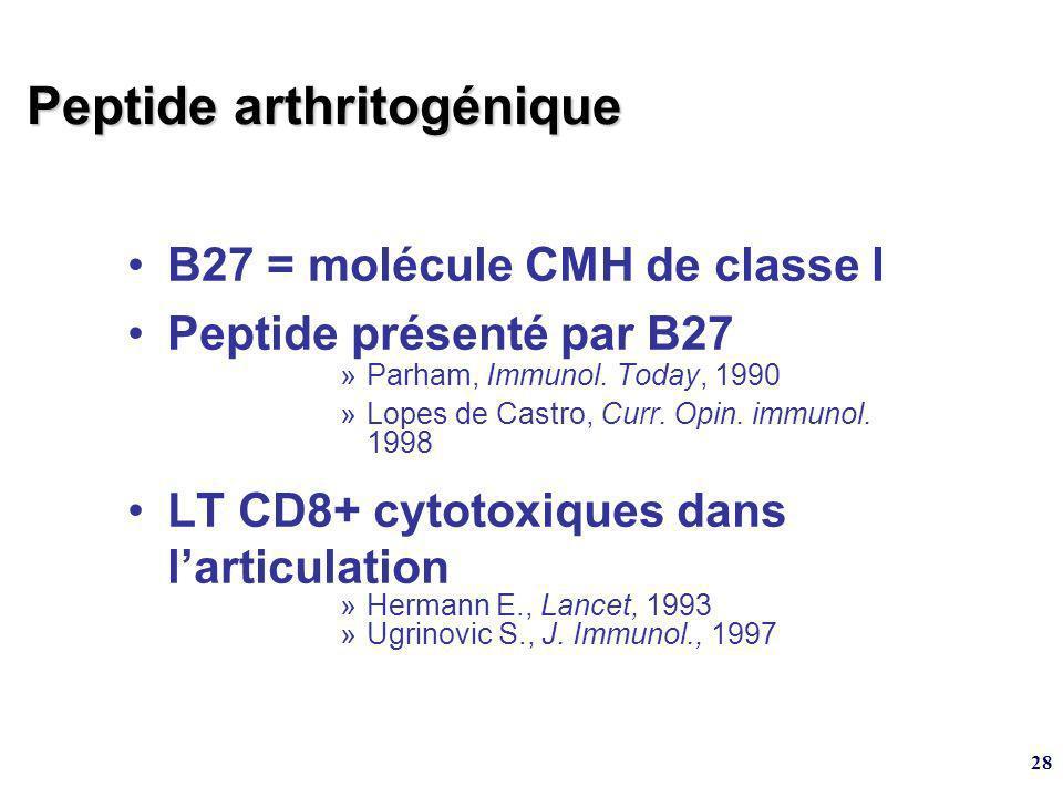 28 B27 = molécule CMH de classe I Peptide présenté par B27 »Parham, Immunol. Today, 1990 »Lopes de Castro, Curr. Opin. immunol. 1998 LT CD8+ cytotoxiq