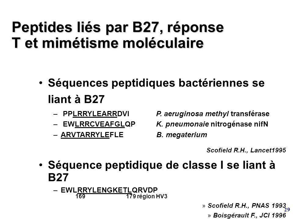 29 Peptides liés par B27, réponse T et mimétisme moléculaire Séquences peptidiques bactériennes se liant à B27 – PPLRRYLEARRDVIP.