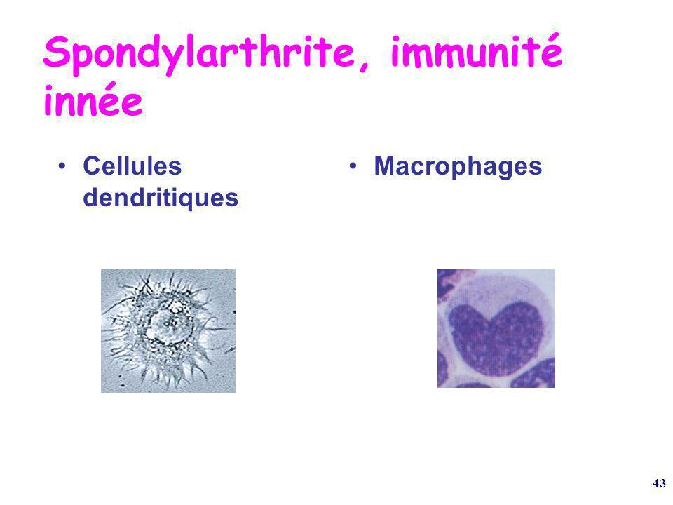 43 Spondylarthrite, immunité innée Cellules dendritiques Macrophages