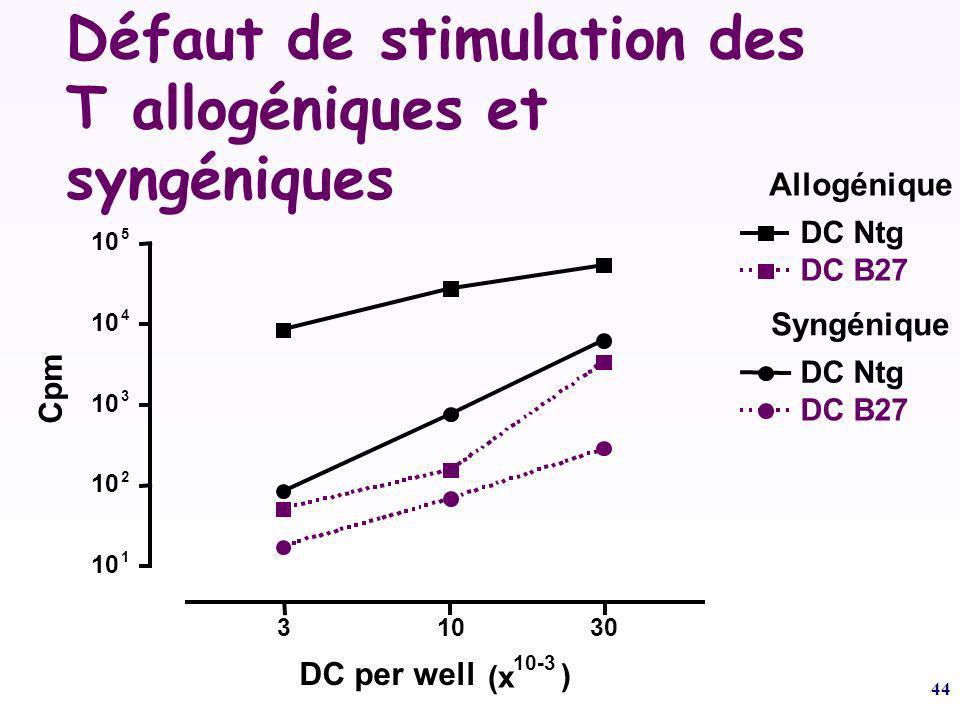 44 Défaut de stimulation des T allogéniques et syngéniques.. 330 10 1 2 3 4 5 DC Ntg DC B27 DC Ntg DC B27 Cpm DC per well (x 10-3 ) Allogénique Syngén