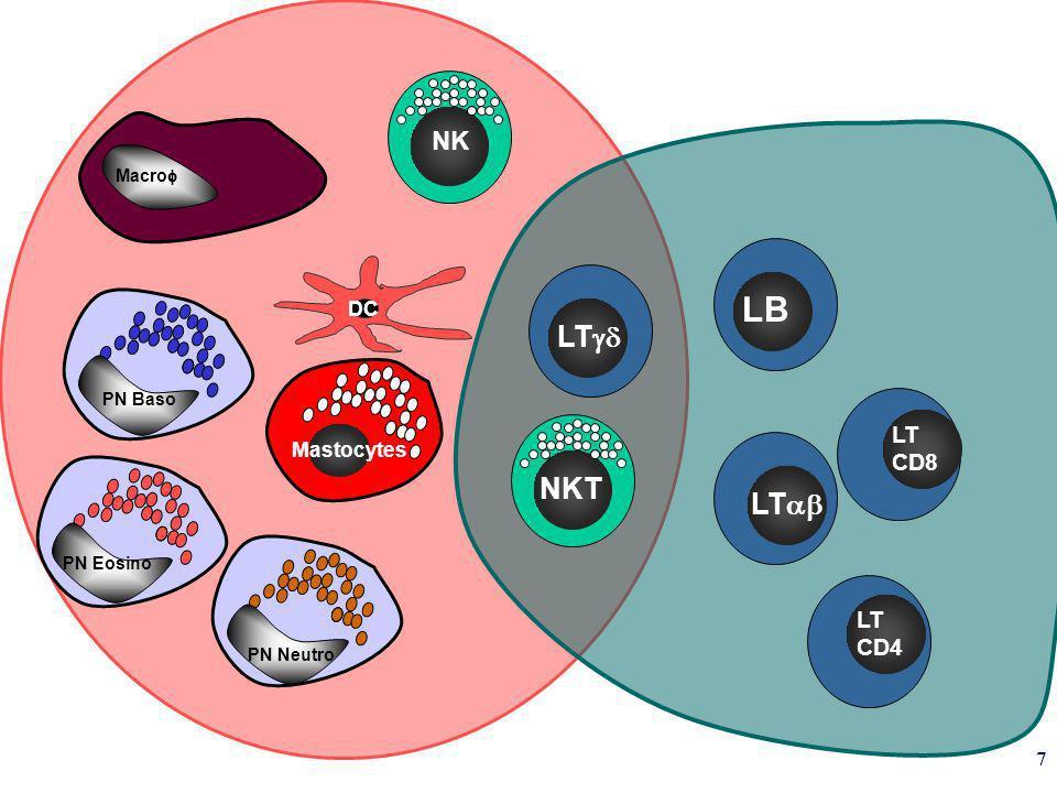 7 LT CD8 LT CD4 LB NKT DC Mastocytes PN Baso PN Eosino PN Neutro Macro NK