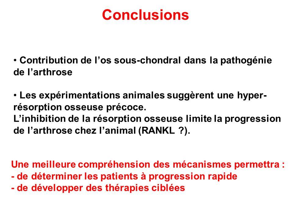 Conclusions Contribution de los sous-chondral dans la pathogénie de larthrose Les expérimentations animales suggèrent une hyper- résorption osseuse pr