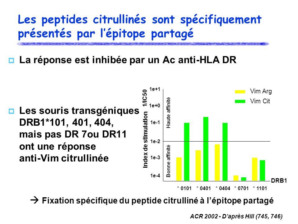 La réponse est inhibée par un Ac anti-HLA DR Les souris transgéniques DRB1*101, 401, 404, mais pas DR 7ou DR11 ont une réponse anti-Vim citrullinée ACR 2002 - Daprès Hill (745, 746) Fixation spécifique du peptide citrulliné à lépitope partagé 1e+1 1e+0 1e-1 1e-2 1e-3 1e-4 * 0101* 0401* 0404* 0701* 1101 DRB1 Vim Arg Vim Cit Index de stimulation 1/IC50 Haute affinité Bonne affinité Les peptides citrullinés sont spécifiquement présentés par lépitope partagé
