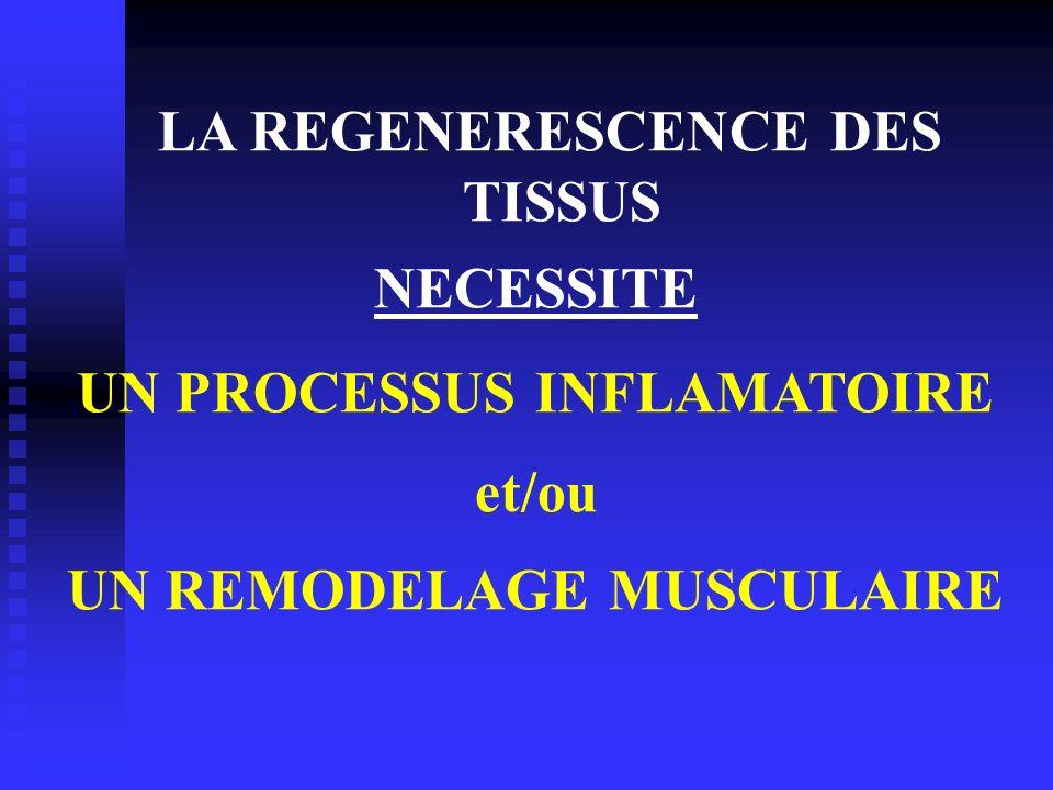 LA REGENERESCENCE DES TISSUS NECESSITE UN PROCESSUS INFLAMATOIRE et/ou UN REMODELAGE MUSCULAIRE