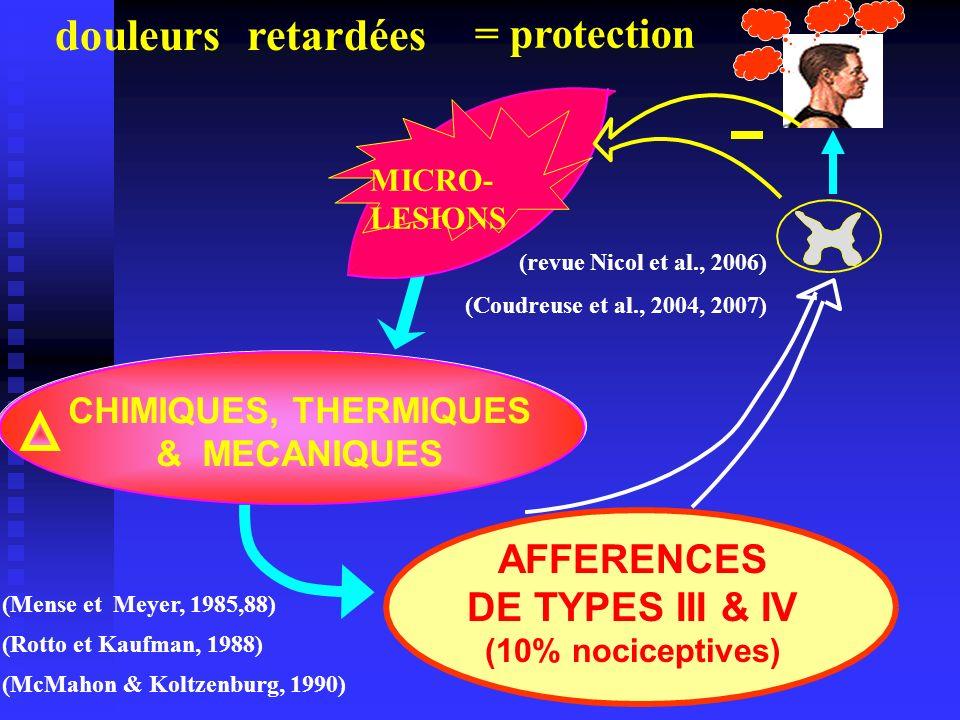 INFLAMMATION AFFERENCES DE TYPES III & IV (10% nociceptives) (McMahon & Koltzenburg, 1990) (Mense et Meyer, 1985,88) (Rotto et Kaufman, 1988) MICRO- L