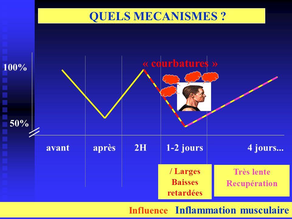 aprèsavant2H1-2 jours4 jours... 100% 50% / Larges Baisses retardées Très lente Recupération QUELS MECANISMES ? « courbatures » Influence Inflammation