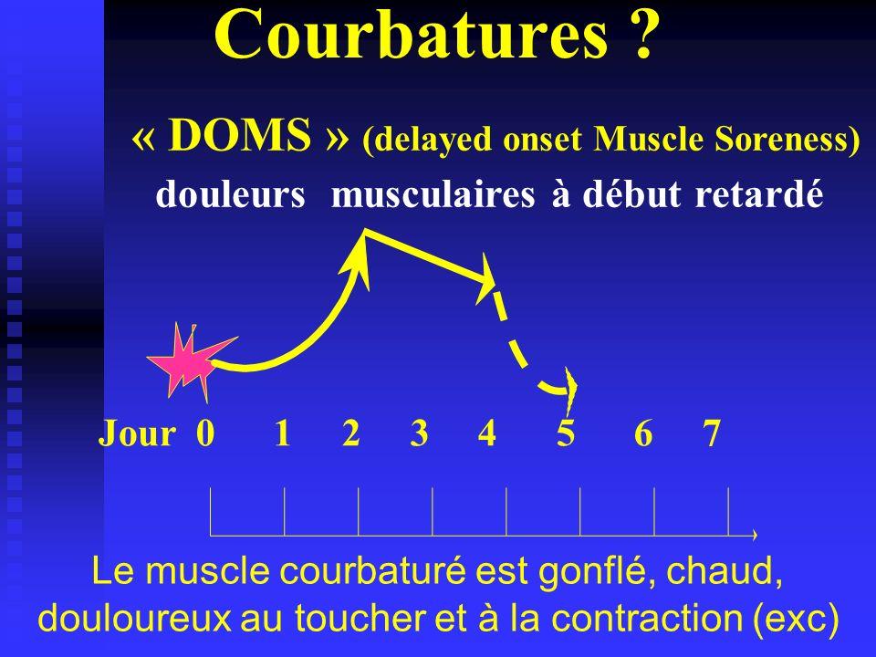 Le muscle courbaturé est gonflé, chaud, douloureux au toucher et à la contraction (exc) Courbatures ? Jour0 1 2 3 4 5 6 7 « DOMS » (delayed onset Musc
