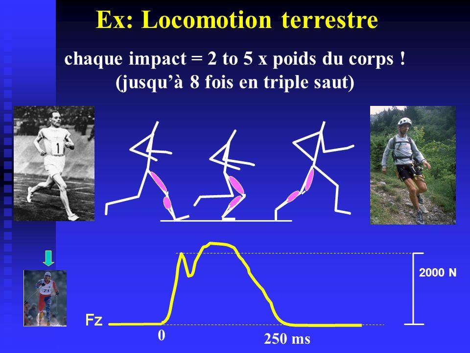 chaque impact = 2 to 5 x poids du corps ! (jusquà 8 fois en triple saut) 2000 N 0 250 ms Ex: Locomotion terrestre